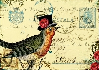 Bird Postcard Swap
