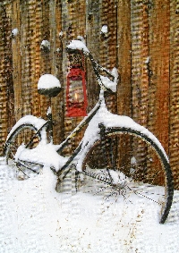 Bicycle postcard Swap