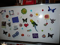 Fridge Magnets (International)