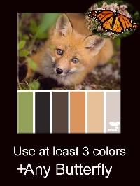 **PBP Butterfly +One Foxy Palette**