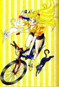 Sailor Soldier ATC - 5. Sailor Venus/Mina